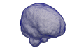 Brain CBC3D.png